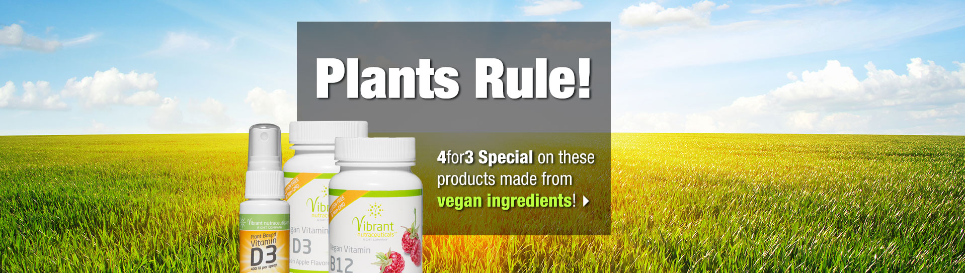 Plant-based products 4for3 offer slide